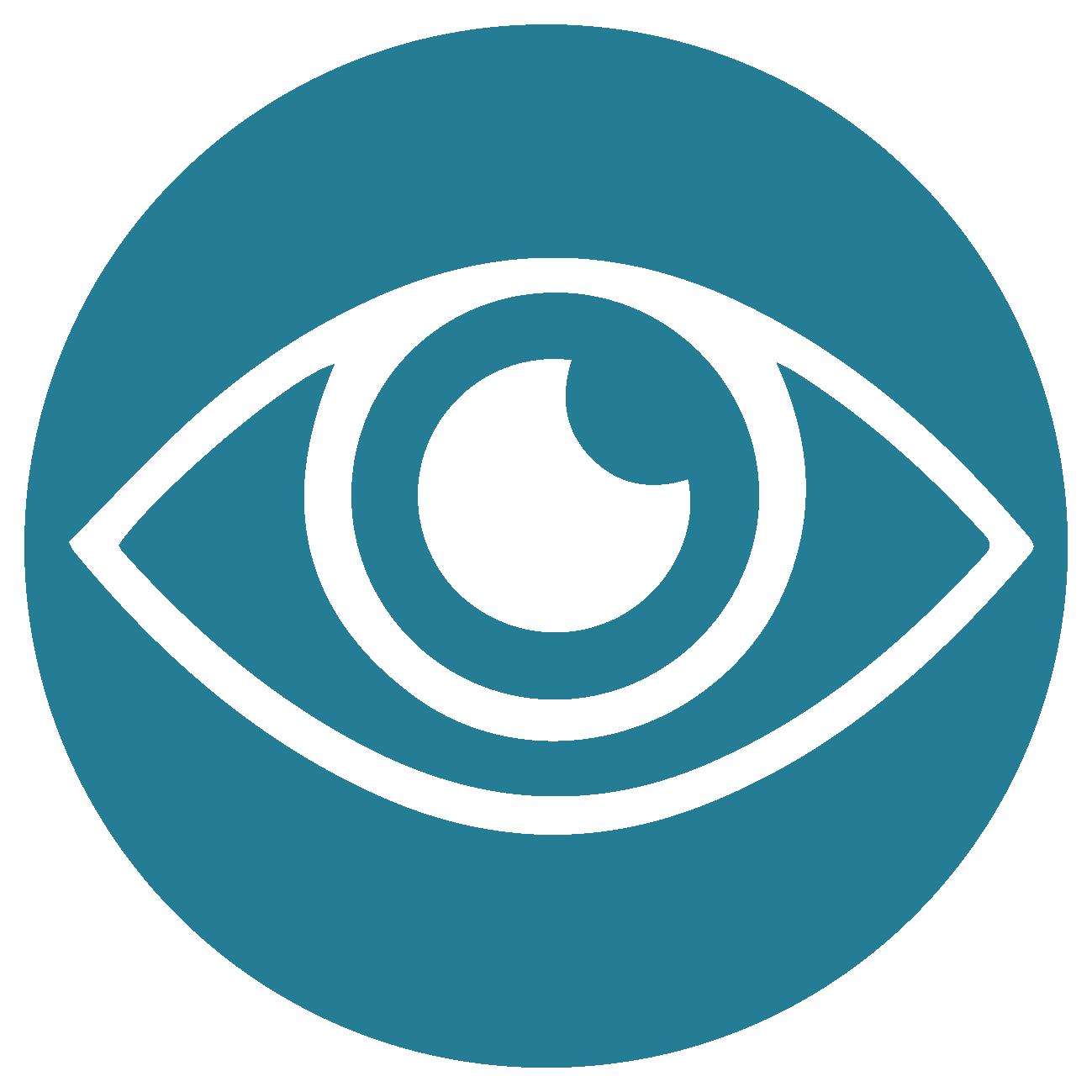 Vision-Eye